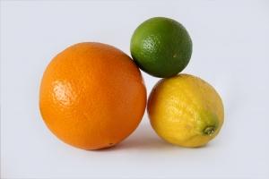 citrus-1281545-m