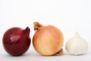 onions-and-garlic-1097088-m