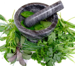 mortar-pestle-with-herbs-1320205