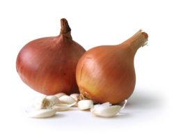 onions-garlics-1171862